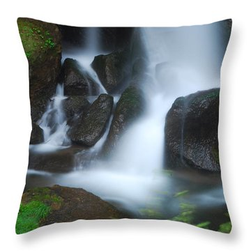 Dragon Head Falls Throw Pillow