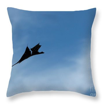 Throw Pillow featuring the photograph Dragon In Flight by Jane Ford