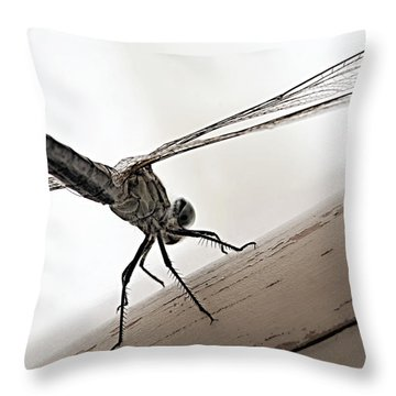 Dragon Of The Air  Throw Pillow