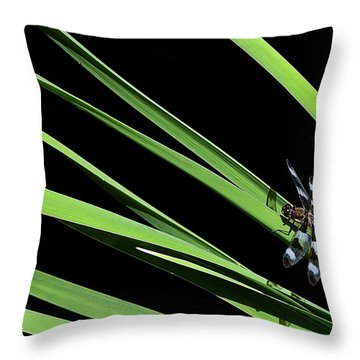 Dragon Resting On Blades Throw Pillow