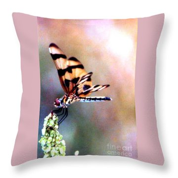 Throw Pillow featuring the photograph Dragon Wings by Michael Hoard