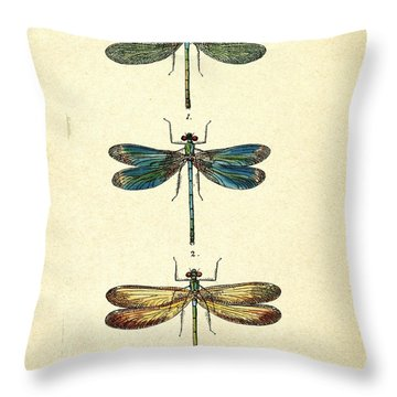 Dragonfly Throw Pillows