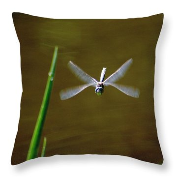 Throw Pillow featuring the photograph Dragonflight by Ben Upham III