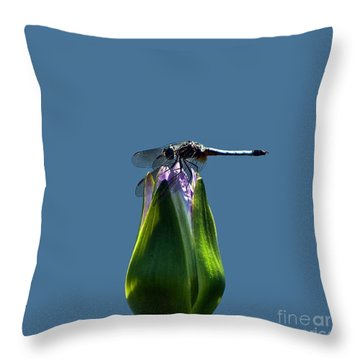 Dragonfly Appreciates A Flower Throw Pillow by Byron Varvarigos