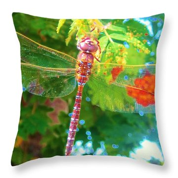 Dragonfly Throw Pillow by Cathy Long