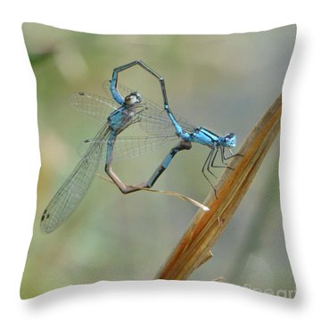 Dragonfly Courtship Throw Pillow