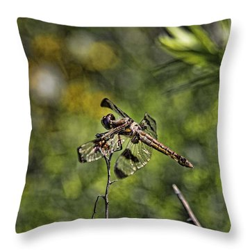 Dragonfly Throw Pillow by Daniel Sheldon