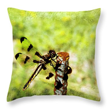 Dragonfly Eating Breakfast Throw Pillow by Andee Design