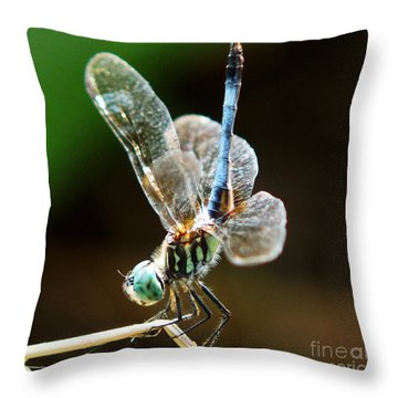Dragonfly Headstand Throw Pillow by Kim Pate
