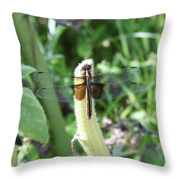 Throw Pillow featuring the photograph Dragonfly by Karen Silvestri