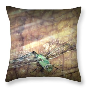 Dragonfly Leap Of Faith Throw Pillow by Dawna Morton