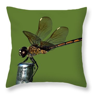Throw Pillow featuring the photograph Dragonfly by Meg Rousher