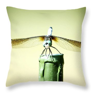 Dragonfly Throw Pillow by Michael White