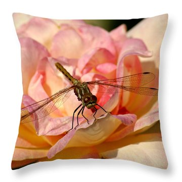 Throw Pillow featuring the photograph Dragonfly On A Rose by Ben Upham III