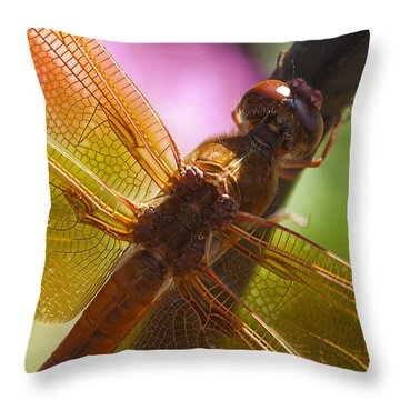 Dragonfly Patterns Throw Pillow