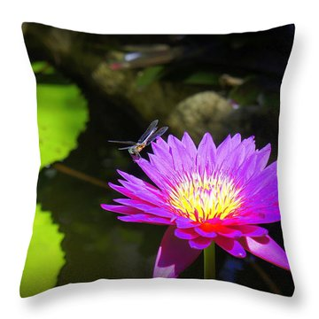 Throw Pillow featuring the photograph Dragonfly Resting by Laurie Perry