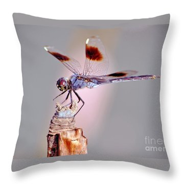 Throw Pillow featuring the photograph Dragonfly by Savannah Gibbs