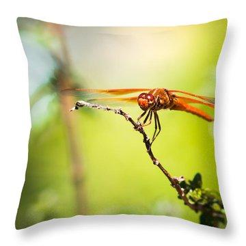 Dragonfly Smile Throw Pillow by Priya Ghose