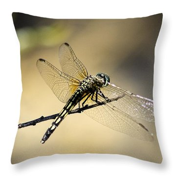 Throw Pillow featuring the photograph Dragonfly by Viktor Savchenko