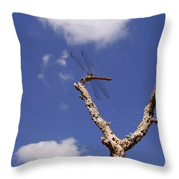 Throw Pillow featuring the photograph Dragonflys In My Backyard 000 by Chris Mercer