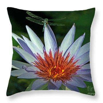 Dragonlily Throw Pillow by Larry Nieland