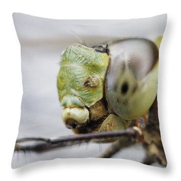 Dragon's Eye Throw Pillow by Shoal Hollingsworth