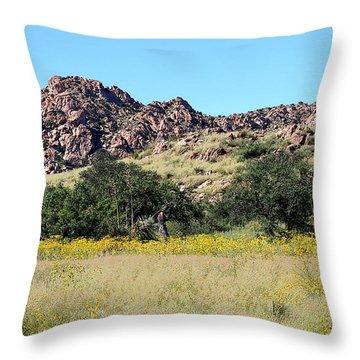 Dragoon Mountains Throw Pillow by Joe Kozlowski