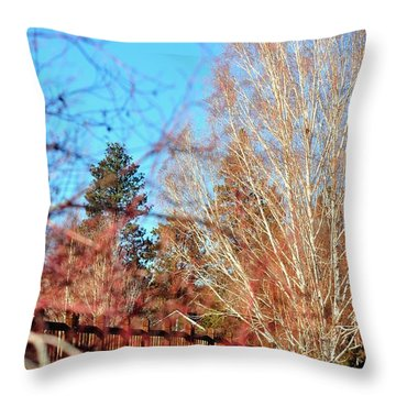 Drake Park Bridge 21655 Throw Pillow