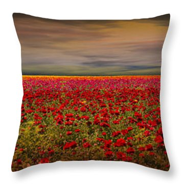 Drama Over The Flower Fields Throw Pillow by Angela A Stanton