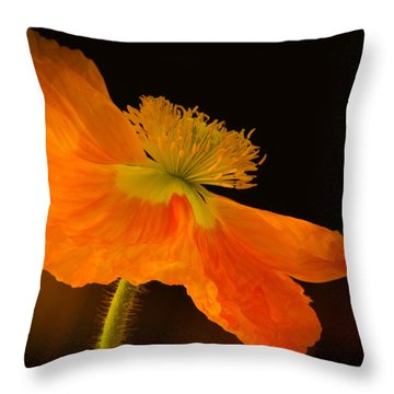 Dramatic Orange Poppy Throw Pillow by Don Schwartz