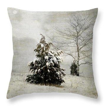 Dread Of Winter Throw Pillow
