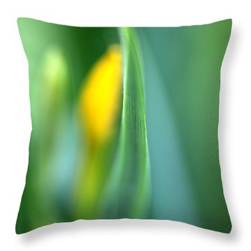 Dream Throw Pillow by Annie Snel