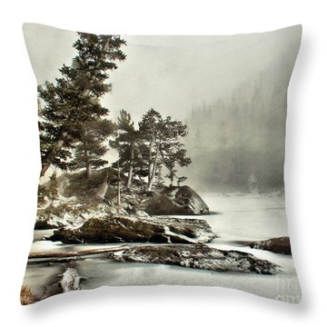Dream Blizzard Throw Pillow by Steven Reed