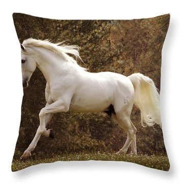 Dream Horse Throw Pillow