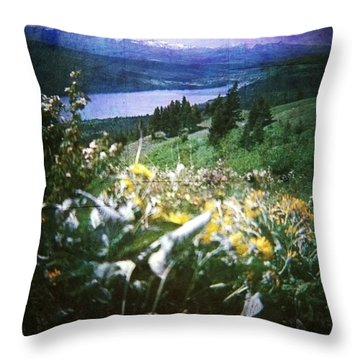 Dream In East Glacier Throw Pillow