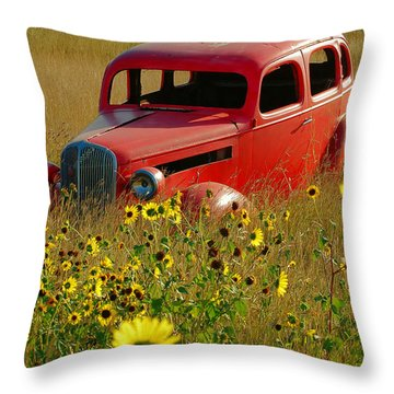 Throw Pillow featuring the photograph Dream Left Behind by Leticia Latocki