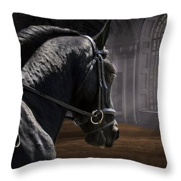 Dream Lofty Dreams Throw Pillow by Fran J Scott