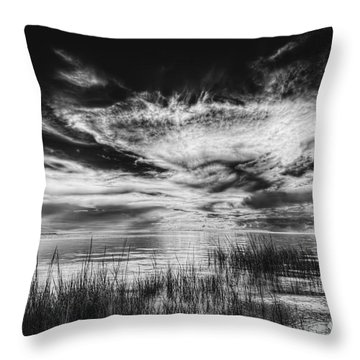 Dream Of Better Days-bw Throw Pillow