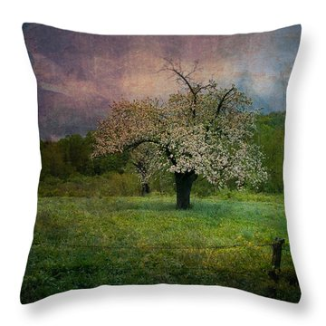 Throw Pillow featuring the photograph Dream Of Spring by Jeff Folger