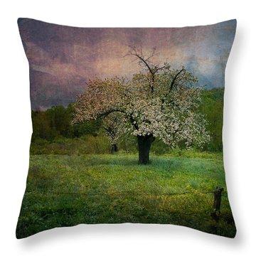 Dream Of Spring Throw Pillow