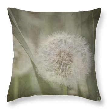 Dream Of The Future Throw Pillow