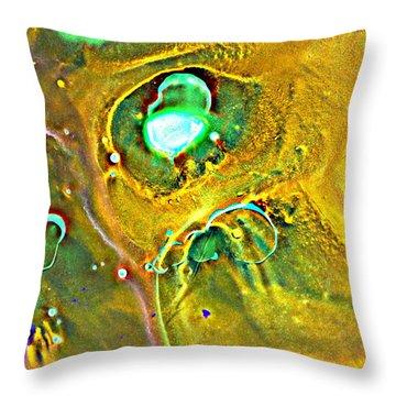 Dream Window Throw Pillow