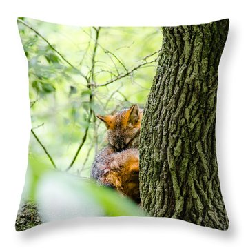 Dreaming Above All Throw Pillow