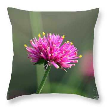 Dreaming In Fuschia II Throw Pillow by Suzanne Gaff