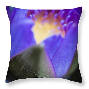 Dreaming Mollusk  Throw Pillow by Priya Ghose