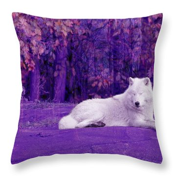 Dreaming Of Another World Throw Pillow by Vicki Spindler