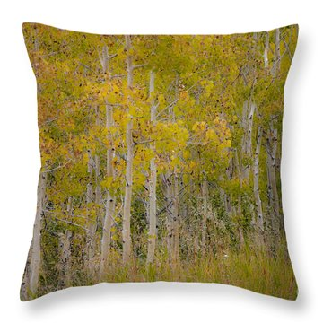 Dreaming Of Fall Throw Pillow