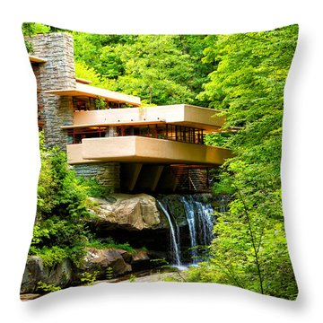 Dreaming Of Fallingwater 3 Throw Pillow