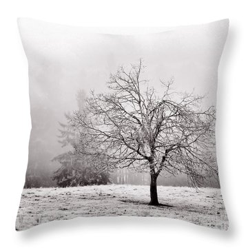 Dreaming Of Life To Come Throw Pillow