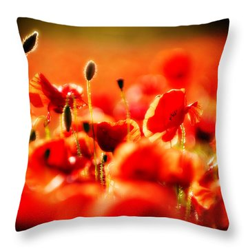 Throw Pillow featuring the photograph Dreaming Of Poppies by Meirion Matthias